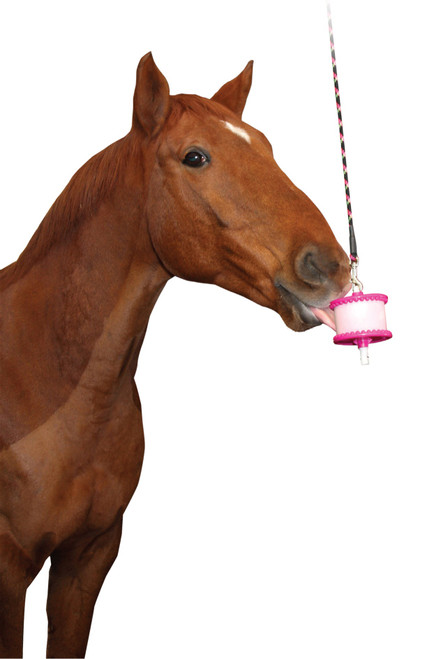 Likit holder - horse toy in use