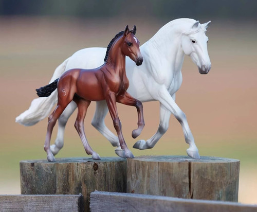 Breyer Fantasia Del C and Gozosa SCS