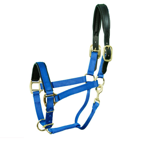 CHAFELESS BREAKAWAY HALTER PADDED CROWN AND NOSE - Royal Blue