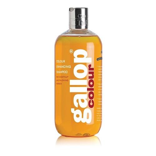 Gallop Colour enhancing shampoo - Chestnut and Palomino horses