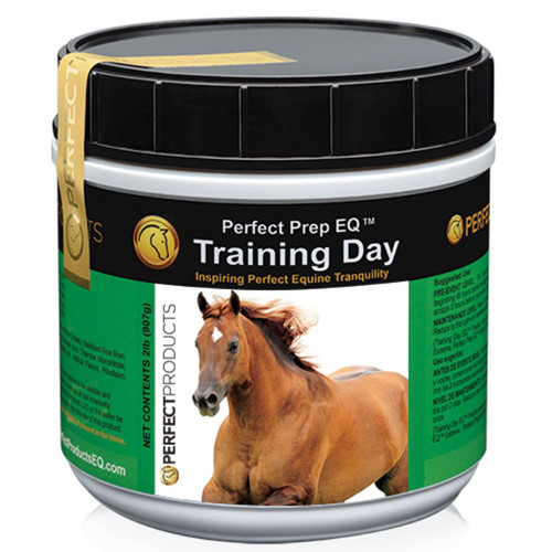Perfect Prep EQ Training Day - 2 lb