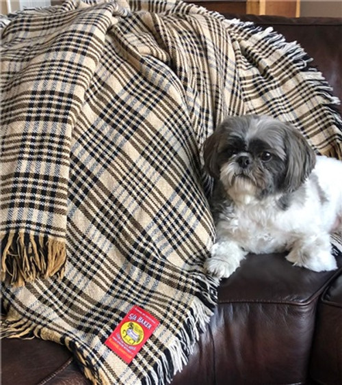 5/A Baker Plaid Afghan, shown with dog