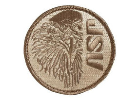 ASP  Coyote Patches (Iron-On), ASP Eagle, 59140