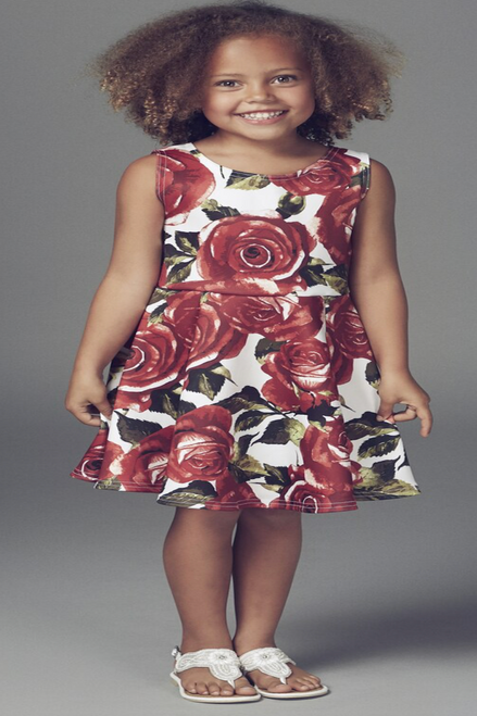 Children's Red Rose Skater Dress