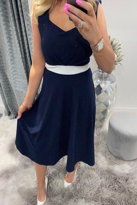 Navy & White Gemma Pleated Skater Dress