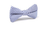 OTAA Blue & White Chalk Stripes Bow Tie