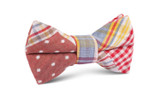 OTAA Plaid Red Gingham Kids Bow Tie