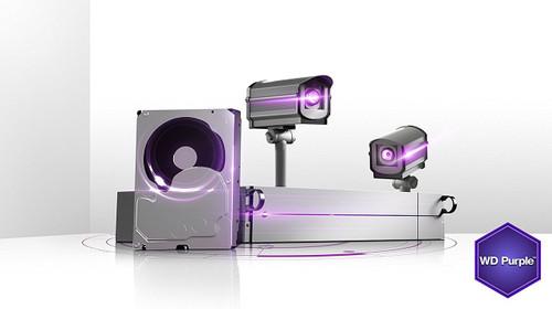 WD Purple 1TB Surveillance Hard Disk Drive - 5400 RPM Class SATA 6 Gb/s 64MB Cache 3.5 Inch - WD10PURX