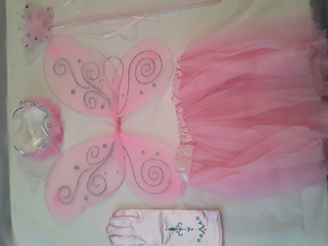 Fairy Princess Costume Sets