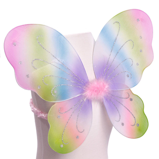 Rainbow Pink Green Blue Purple with Silver Glitter Butterfly Fairy Wings Costume for kids Front