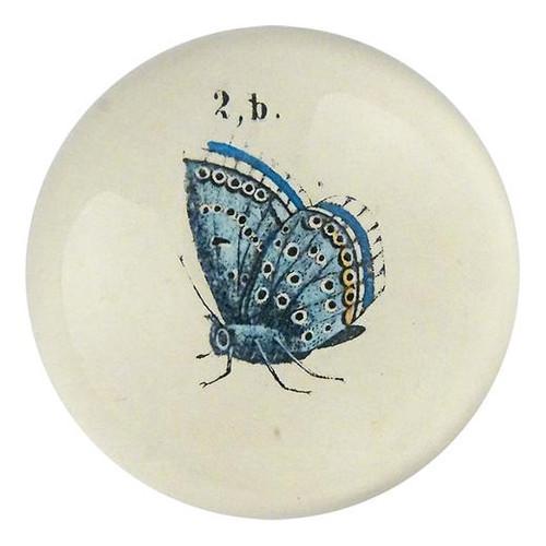 John Derian Butterfly 2b  Paperweight
