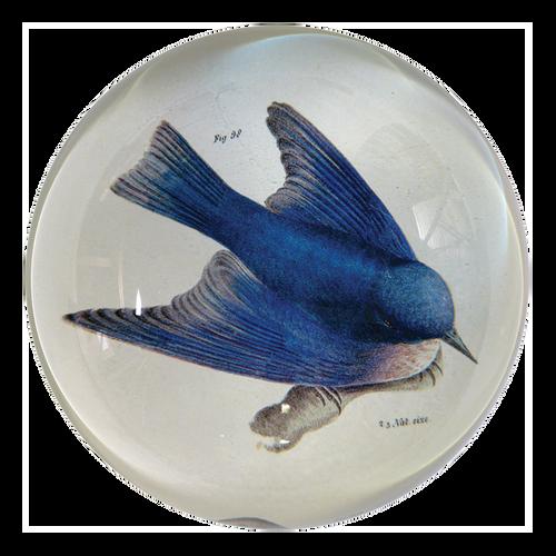 John Derian Bluebird Dome Paperweight