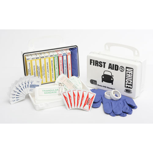 Vehicle First Aid Kit - 10-Unit