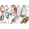 Owl Transfer  Small Rub On Furniture Transfer  with FREE Shipping