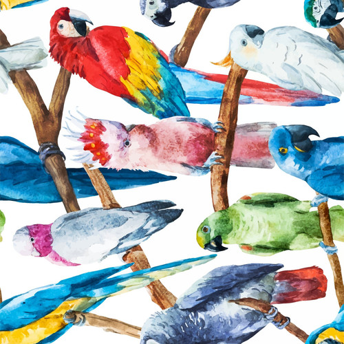 Birds Decoupage Rice Paper from Dixie Belle,  3 sheets per pack,  Free Shipping