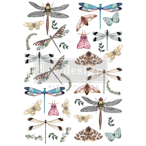 Riverbed Dragonflies Rub on Decor Transfer from Redesign with Prima with Free shipping Riverbed Dragonflies Rub on Decor Transfer from Redesign with Prima with Free shipping