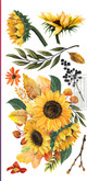 """Affordable transfers! Sunflower Afternoon Transfer Collection  12""""; X 6"""" with FREE Shipping"""
