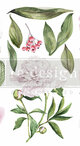 """Morning Peonies Rub On Transfer Collection from Redesign with Prima 12"""";X 6"""" with FREE Shipping"""