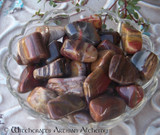 PETRIFIED WOOD Tumbled Gemstone