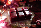RADIANT RED HARVEST Dark Autumn Red Highly Scented Artisan Soy Paraffin Wax Blend Clamshell Melts