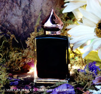OBSIDIAN UMBRA Cashmere Amber Artisan Perfume Oil by Witchcrafts Artisan Alchemy