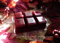 RADIANT RED MAPLE Dark Autumn Red Highly Scented Artisan Soy Paraffin Wax Blend Clamshell Melts