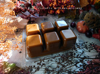 DARK HARVEST PUMPKIN Highly Scented Artisan Burnt Orange Brown Soy Paraffin Wax Blend Clamshell Melts
