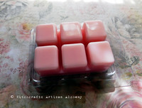 FAERIE NECTAR Soft Pink Highly Scented Artisan Soy Paraffin Wax Blend Clamshell Melts