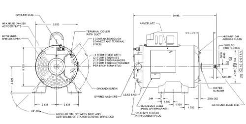 EV230 US Motors 1/15 hp 1725 RPM 48 Frame 115V Thru-Bolt Spa Motor