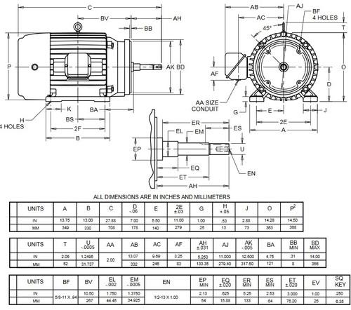 HJ30P1GM US Motors 30 hp 3600 RPM  3-phase 286JM Frame 575V Close-Coupled Pump Motor