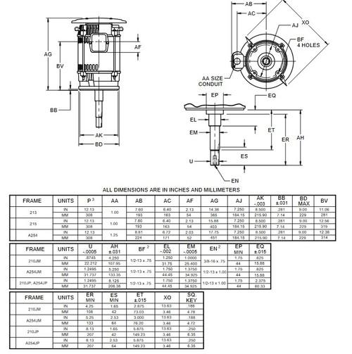 DJ10P1DU US Motors 10 hp 3600 RPM  3-phase 213JM Footless 208-230/460V (ODP) Close-Coupled Pump Motor