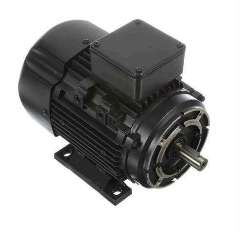 R365 Marathon 1/3 hp 0.25 kW 230/460V 1200 RPM 3-Phase 80C Frame TEFC (rigid base) Motor