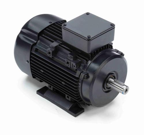 R319A Marathon | 2 hp 1.5 kW 230/460V 1800 RPM 3-Phase 90S Frame TEFC (rigid base) Motor