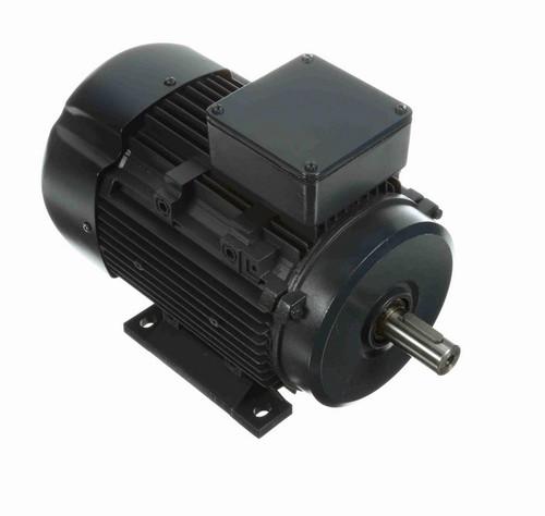 R419A Marathon 2 hp 01.5 kW 575V 1800 RPM 3-Phase 90S Frame TEFC (rigid base) Motor