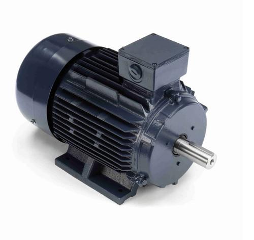 R329A Marathon 7 1/2 hp 5.5 kW 230/460V 1200 RPM 3-Phase 132S Frame TEFC (rigid base) Motor