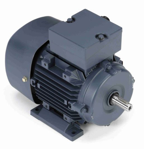 192031.00 Leeson |  1/2 hp 0.37 kw 1800 RPM D71 Frame 230/460V  Electric Metric Motor