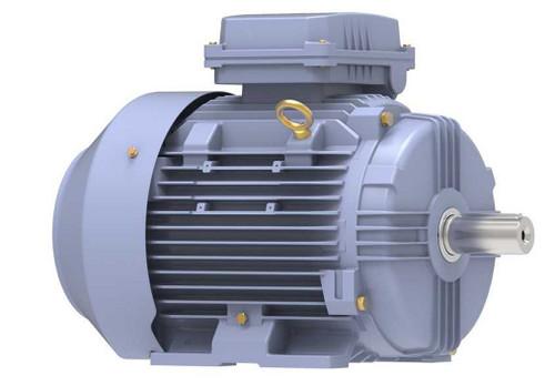 R329B Marathon 7.5 hp 5.5 kw 1200 RPM 132M Frame 230/460V Marathon Electric Metric Motor