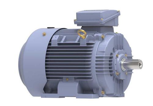 R345B Marathon 40 hp 30 kw 3600 RPM 200L Frame 230/460V Marathon Electric Metric Motor