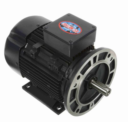 192045.00 Leeson |  3/4 hp 0.56 kw 1800 RPM 80D Frame 230/460V  Electric Metric Motor