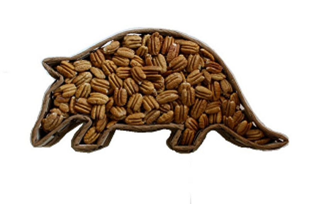 Texas Armadillo Theme Gift Basket