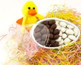Easter Egg Milk & White Chocolate Pecans 8 oz