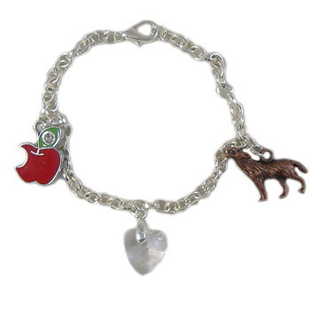 Twilight Inspired Bella Bracelet: Project Instructions