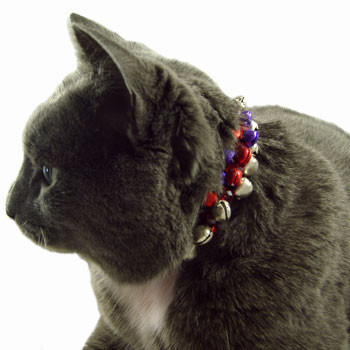 Cat's Red/Purple Bell Collar: Project Instructions