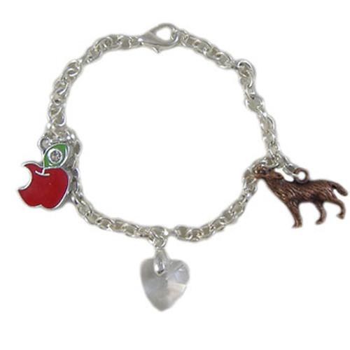 Twilight Inspired Bella Bracelet Kit