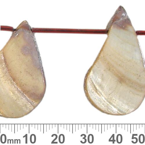 35mm Pale Brown Teardrop Shell Bead Strands