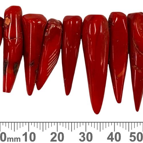 Large Coral Teeth Beads