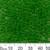 6/0 Medium Green Seed Beads