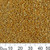 11/0 Galvanised Yellow Gold Delica Seed Beads