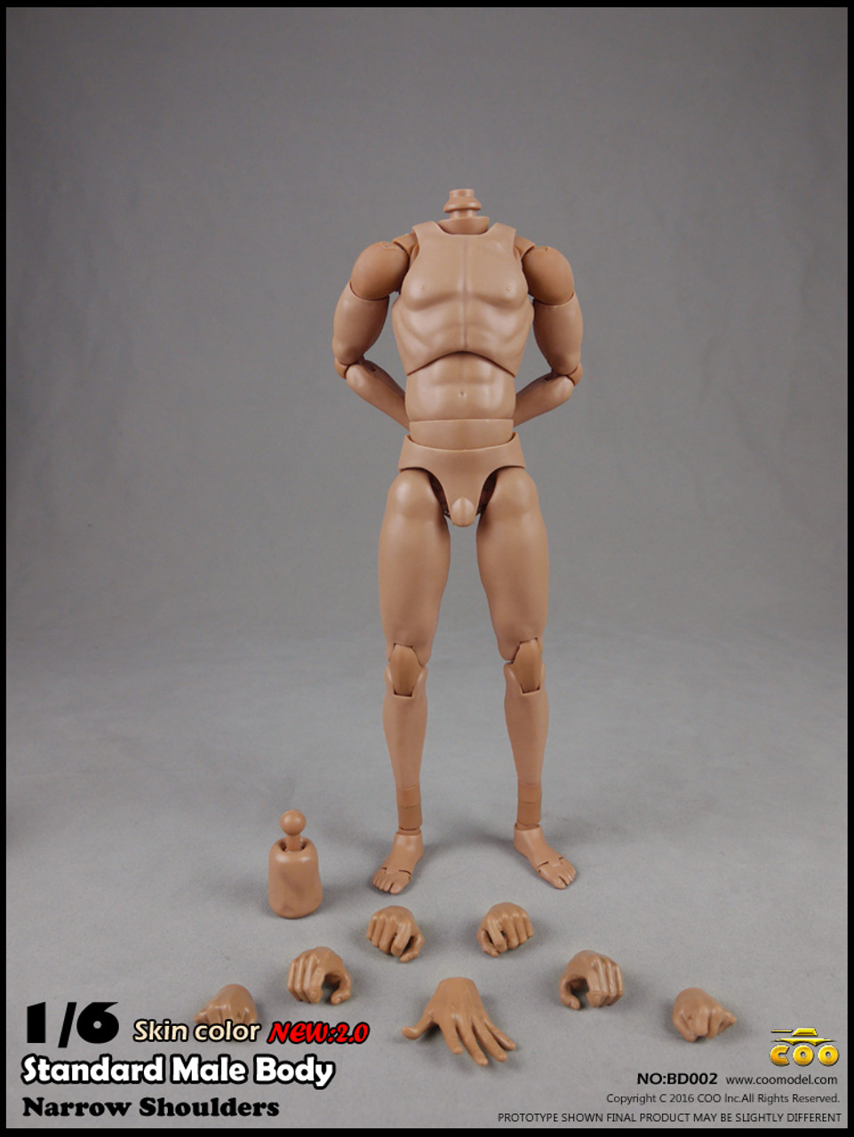 COOMODEL 1//6 Standard Muscle Man Body NO:BD008 Action Figure Doll