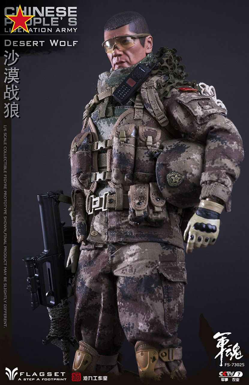 Desert Wolf Chinese People's Liberation Army PLA 1//6 Figure Flagset FS-73025 USA